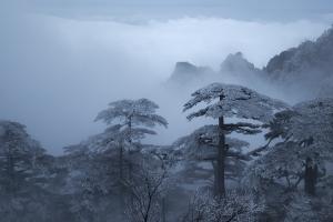 黄山冬雪5  作者:柏云飘雪